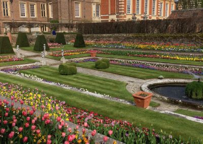 Hampton Court Palace Gardens